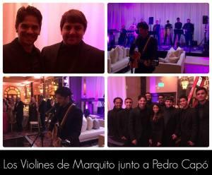 Collage Pedro Capó