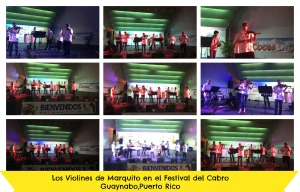 Festival de Cabro